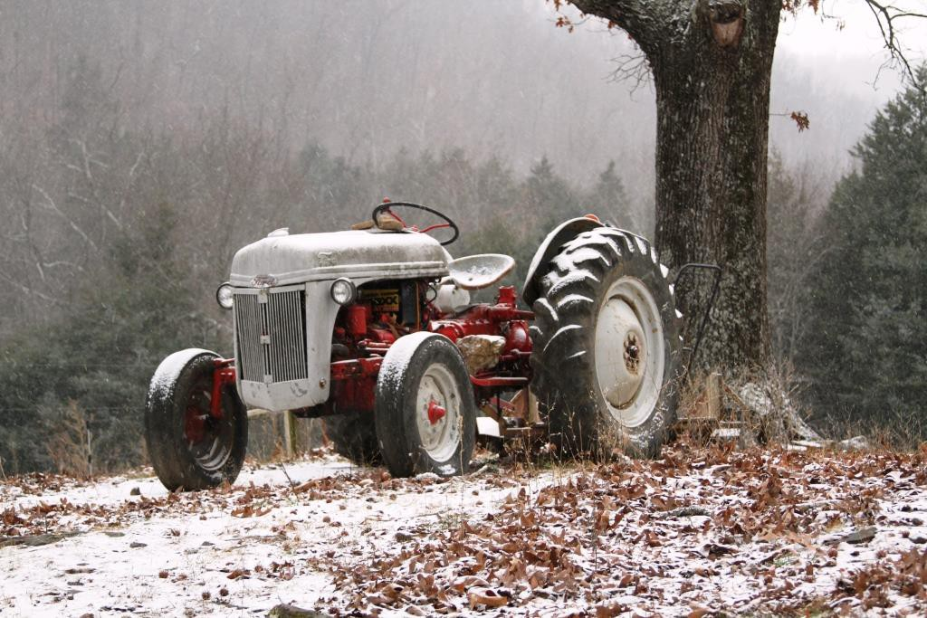 old Ford 8N tractor