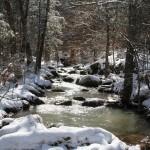 snowy creek tall