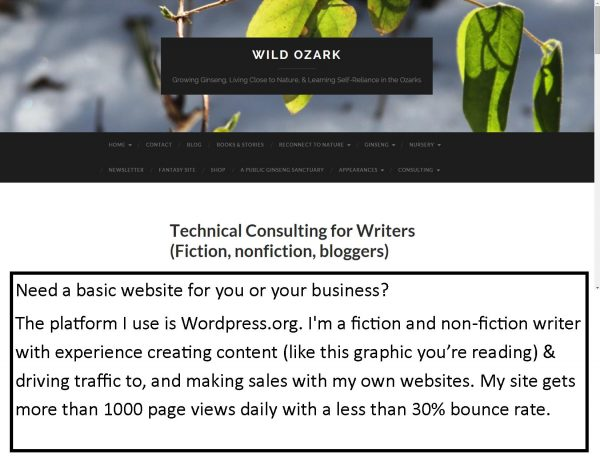 Ad for my technical consulting services.