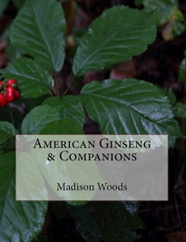 Ginseng Pictures!