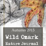 Valentine's Day Gift: The Autumn 2015 collection of Wild Ozark Nature Journal is FREE all week Monday Nov 16 through Friday Nov 20