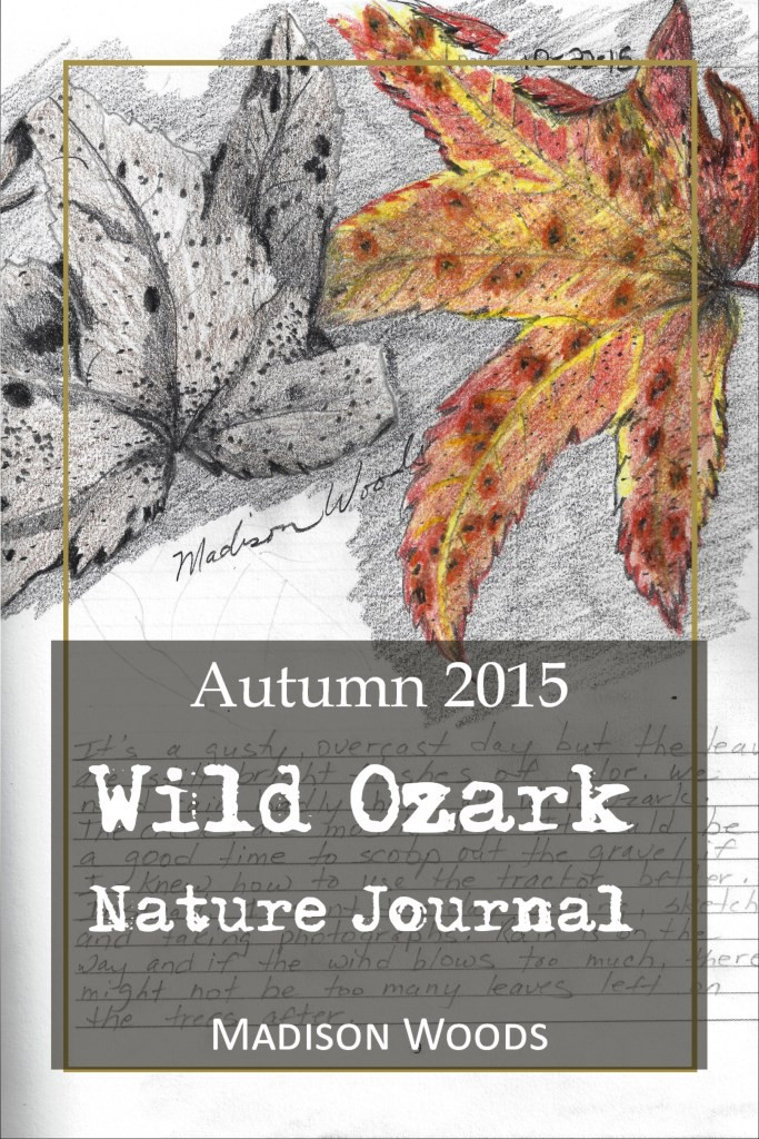 The Autumn 2015 collection of Wild Ozark Nature Journal is FREE all week Monday Nov 16 through Friday Nov 20