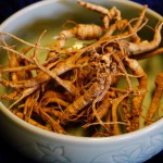 2016 Ginseng Prices were too low at the digger's level, so many diggers left their roots in the ground to grow another year.
