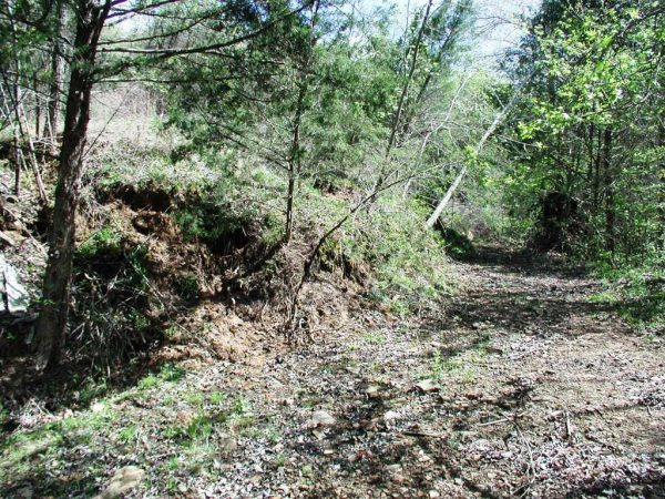 Getting started on clearing the driveway after the landslide last year.
