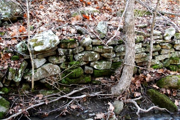 This rock wall is a perfect example of balanced asymmetry and organized chaos.