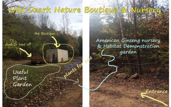 Plans for the Nature Boutique