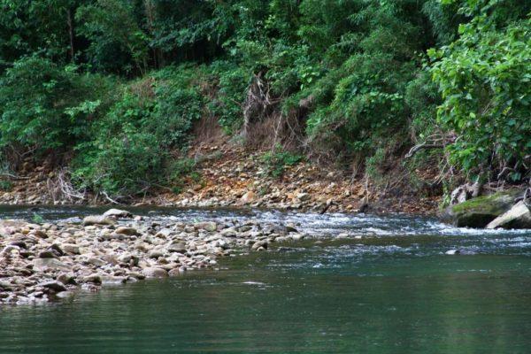A little spot of rapids.