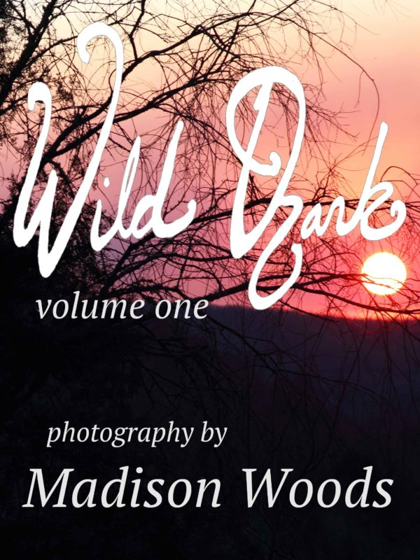 Wild Ozark photos collection, volume 1, available for preorder now.