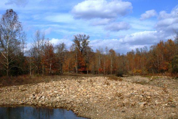 Felkins Creek yet again.