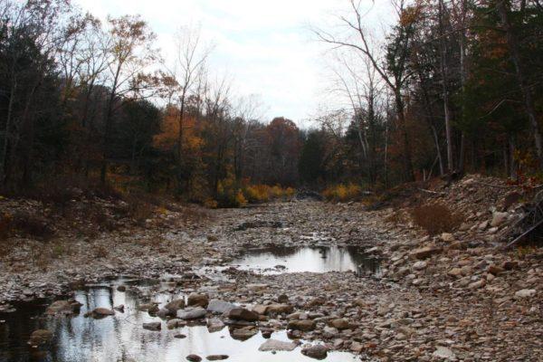 One last view of Felkins Creek.