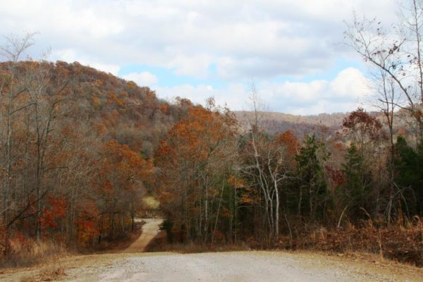 Fall Colors 2107. Almost back to the house. Still have to pass over Felkins Creek one last time.