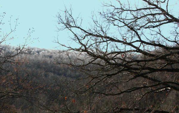 Frozen fog (hoar frost) on the distant mountaintop.