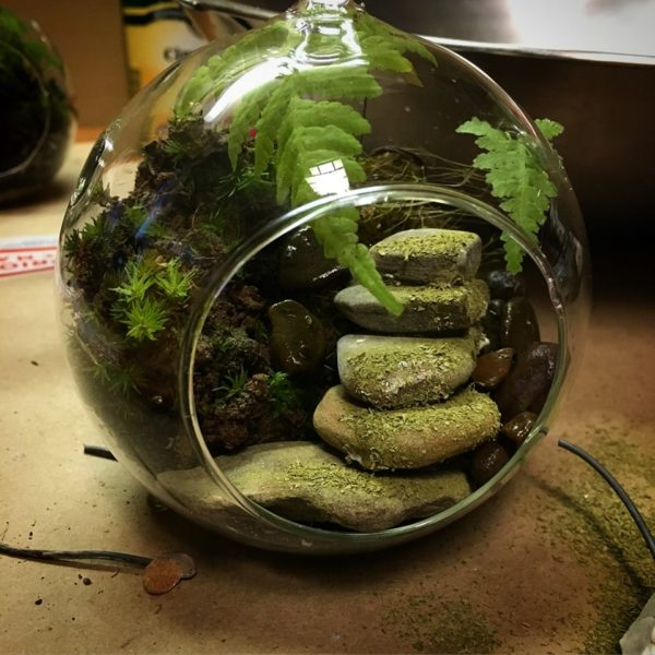 Fairy garden with moss-covered steps.