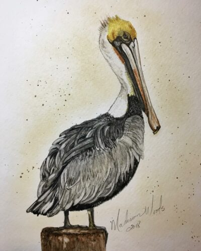 For this pelican, I did have to resort to a couple of outside colors, although they were still my own handmade watercolors. I used lapis for the blue in his eye and French green clay to give the gray the right tint.
