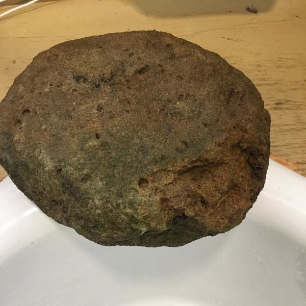 A flattened grapefruit sized rock that'll make some nice handmade paint!