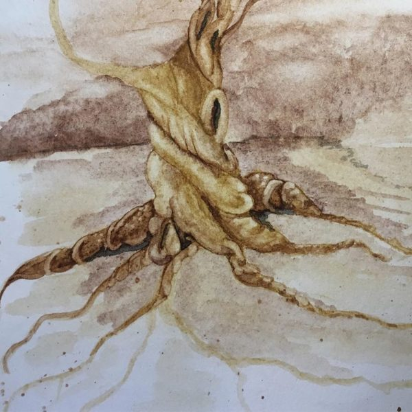 Twisted Tree No. 1. Still working on roots. Will move up to the limbs next.