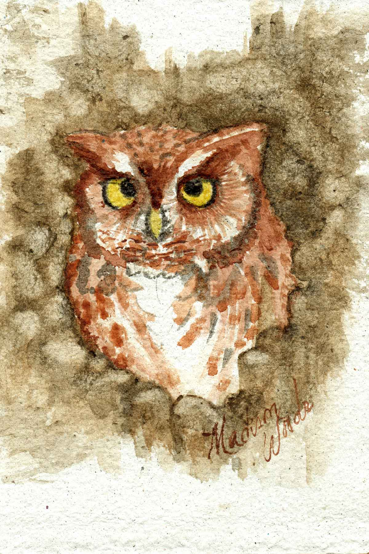 Owl No. 1 in Wild Ozark Paleo Paints.
