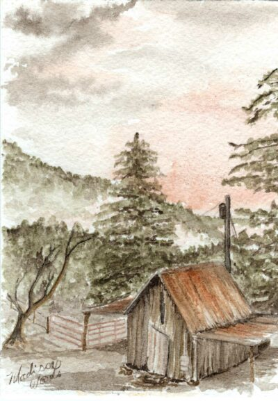 Painting of the old shed, by Madison Woods