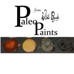 Paleo Paints & Pigments