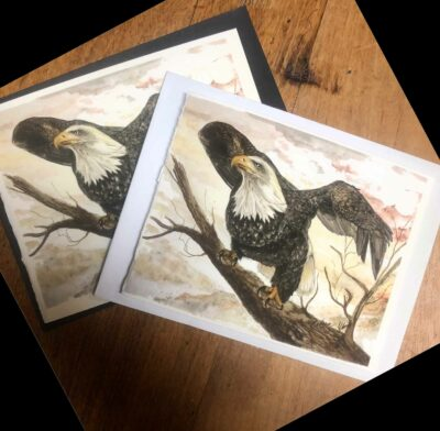 Note cards featuring prints of my bald eagle painting.