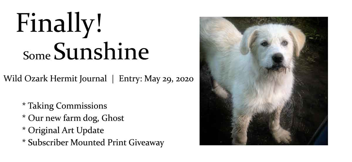 * Taking Commissions * Our new farm dog, Ghost * Original Art Update * Subscriber Mounted Print Giveaway