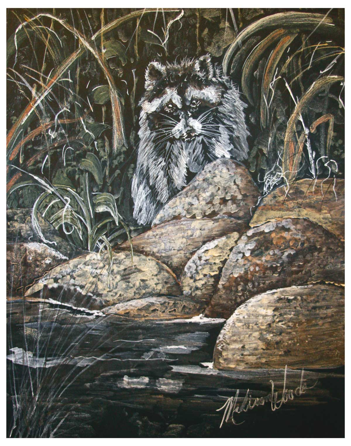 'Raccoon on the Rocks' in Ozark pigments by Madison Woods.