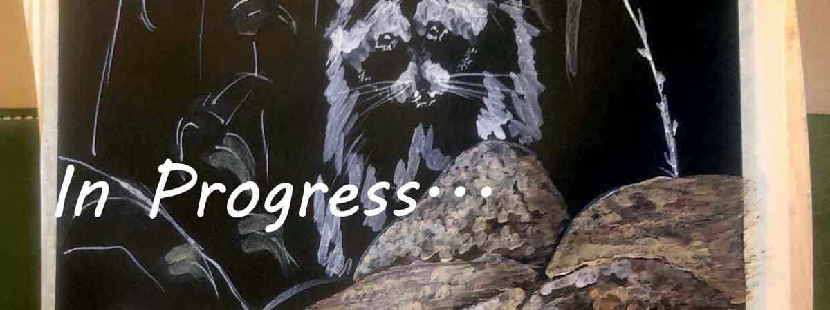 Raccoon painting in progress. Ozark watercolor pigments on black paper.