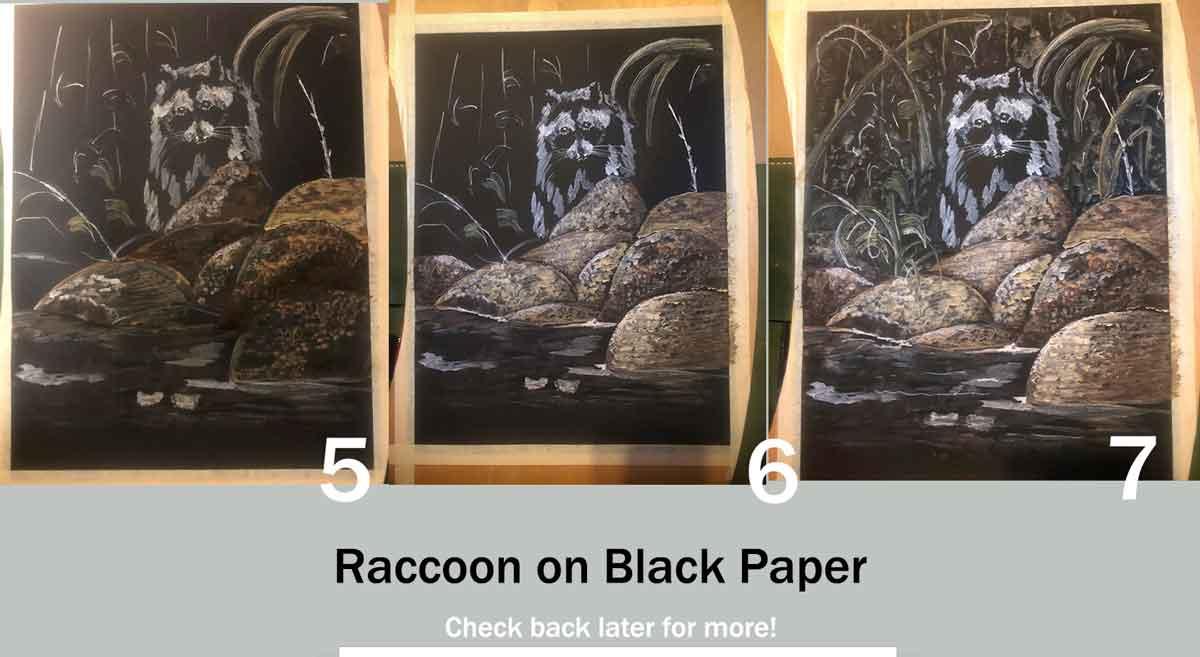 Progress pics of my raccoon painting.