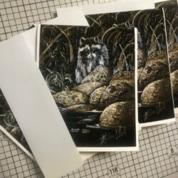 Raccoon note cards, based on artwork by Madison Woods.