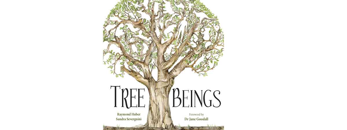The cover of Tree Beings by Raymond Huber and Sandra Severgnini