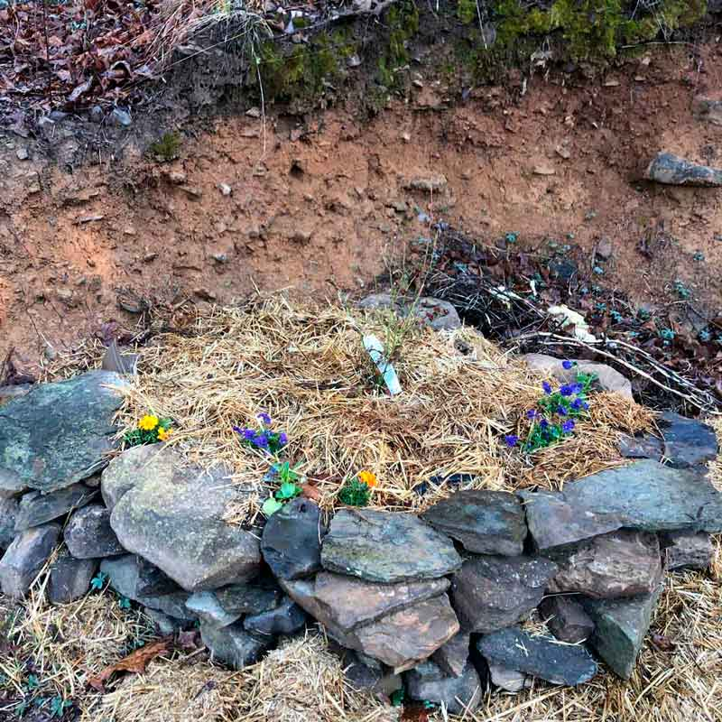 One of my early spring activities are building garden beds with rocks. This one has a blueberry bush planted, along with some pansies and violas.