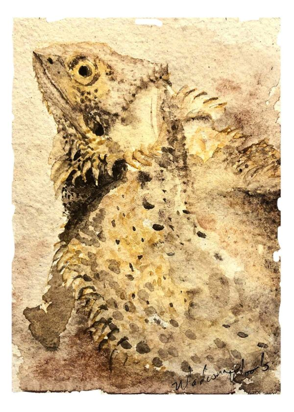 Petunia, the bearded dragon who was my first reptile pet portrait.
