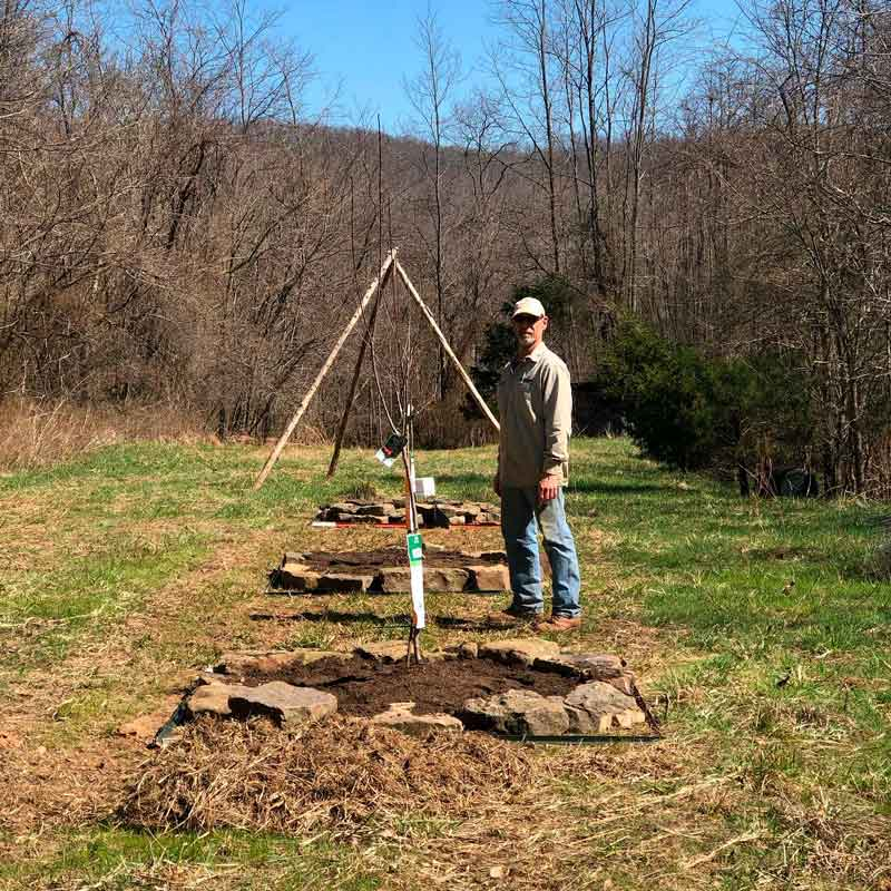 Rob and his fruit trees. He also had to move rocks to build the beds for these, but the tractor can at least go right up to this spot.