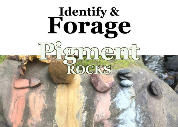 Identify & Forage Pigment Rocks, a Wild Ozark workshop.