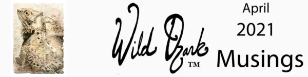 Header for the April 2021 issue of Wild Ozark Musings